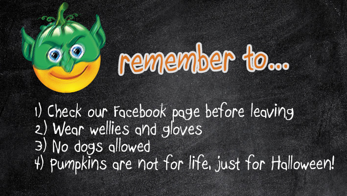 Stacks Image 18